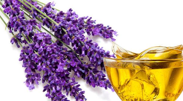 lavender oil benefits1