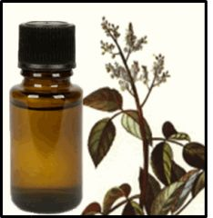 Pimento Leaf Essential Oil
